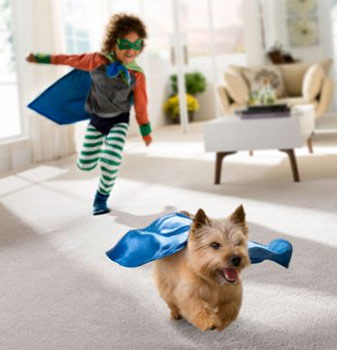 Stainmaster carpet is kid proof AND pet proof - available at American Carpet & Flooring in Torrance