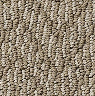 Creative Elegance Albany Road Polyester CE650 Carpet